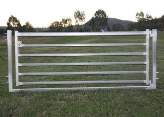 "Portable Sheep Yard Panels 16""X 48"" Galvanized 40mm Square Pipe Material"